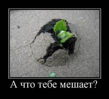 http://www.superdemotivator.ru/dem/demotivatory_155/36_tn.jpg