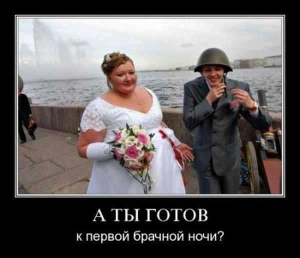 Первая брачная ночь подборка фото 305-784