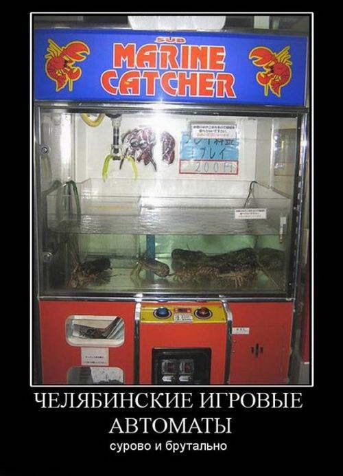 Игровые автоматы демотиваторы игровые автоматы грибочки онлайн без денег