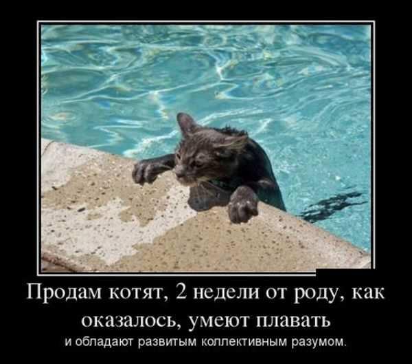 Плавать как сделаешь