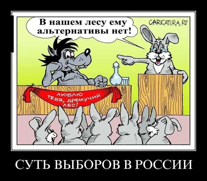 Картинки по запросу выборы в россии юмор картинка