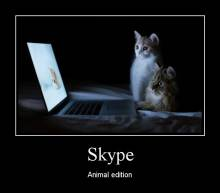 Skype. Animal edition